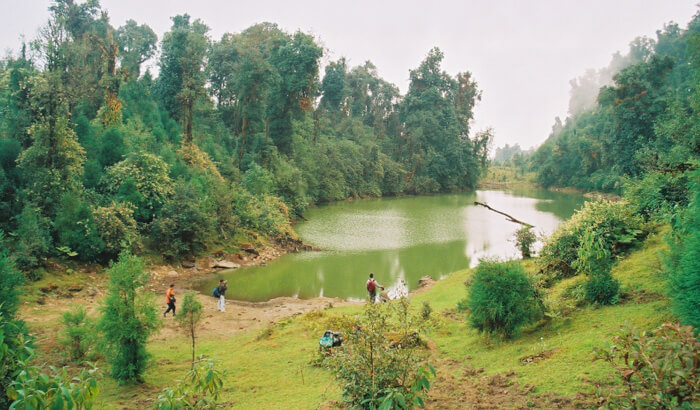 Neora-Valley-National-Park-Darjeeling