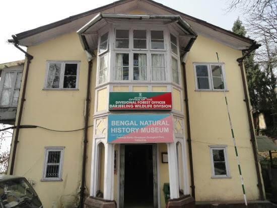 bengal-natural-history